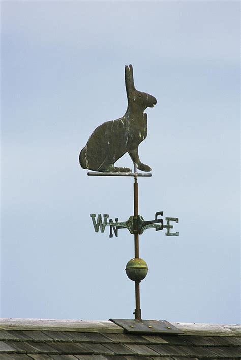 A Weather Vane A Rabbit Shaped Weathervane Atop A Roof Photograph By