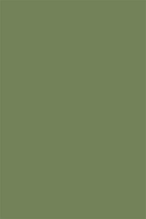 sage green paint little greene sage green no 80