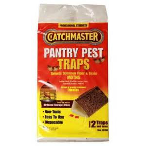 catchmaster pantry pest moth traps 2 pack 812sd the