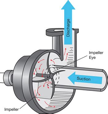 pump sizing: bridging the gap between theory and practice