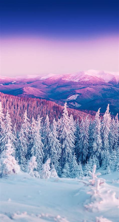 winter wallpapers picture cool wallpapers