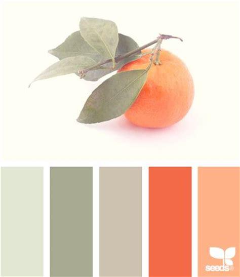 citrus paint color palette color combos orange grey and the