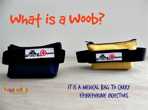 Carry Food Device the woob device bag
