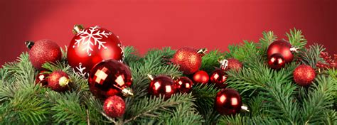 cut your own christmas tree albany ny awesome picture of tree albany ny fabulous homes interior design ideas