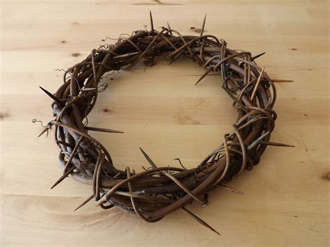 How To Make A Crown Of Thorns Out Of Paper - crown of thorns www imgkid the image kid has it