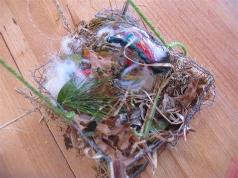 gather nesting materials for birds bird nesting