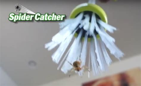 tv  amazing spider catching stick geekologie
