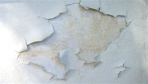 Why Does Paint Peel Ceiling by Curing Paint Failure Problems On Walls House Web
