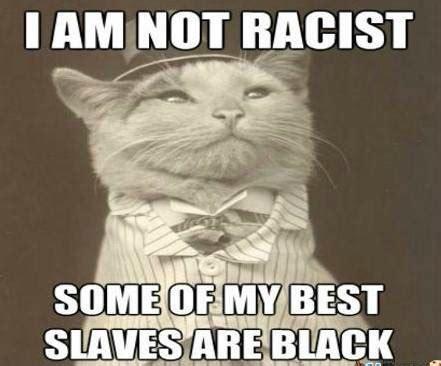 Sarcastic Cat Meme - funny racist memes black white racism memes happy wishes