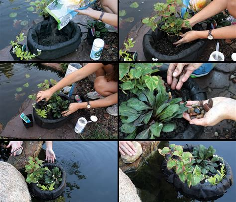 pond aquascape product categories planting containers archive sunlandwatergardens com pond