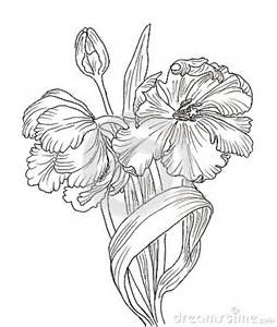 Galerry flower to coloring
