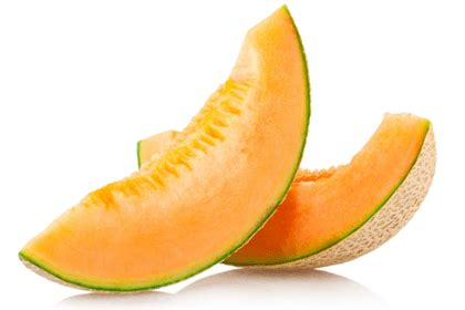 is cantaloupe bad for dogs 10 best fruits and vegetables for dogs heroviral