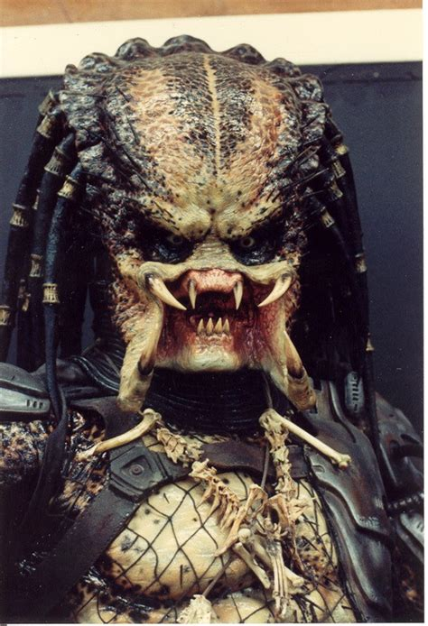 Pel And The Predators hardware le ridicule ne tue pas l acer predator si