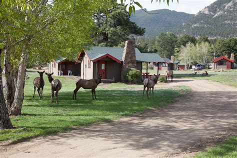 Tiny Town Cabins by Cabins In Estes Park Co Tiny Town Cabins Trout