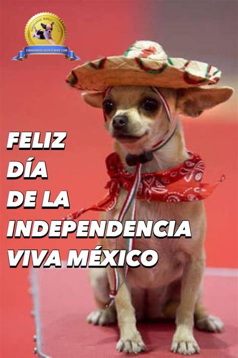 feliz dia de la independencia viva mexico viva mexico independencia 2 feliz d 205 a de la independencia viva m 201 xico chihuahuas