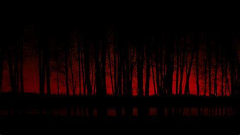 dark wallpaper widescreen 2909 dark forest android hd wallpaper walops com