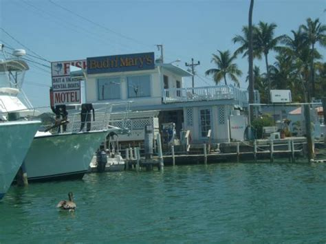 cheap boat rentals islamorada arriving back at the marina picture of bud n mary s