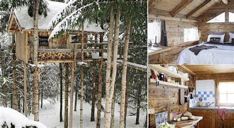 livable tree house plans livable tree house plans inspirational best treehouse home designs s interior design