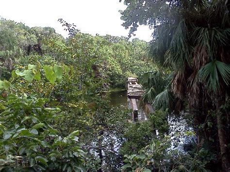 Old rail trestle across the lagoon   Picture of Hugh Taylor Birch State Park, Fort Lauderdale