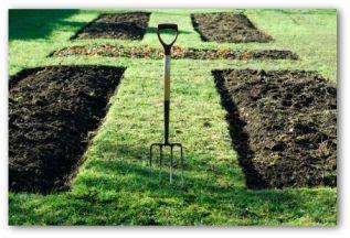 preparing soil for a vegetable garden planning a home vegetable garden