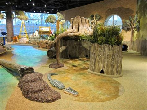 Home Plans Florida by Reviews Of Kid Friendly Attraction Fernbank Museum Of