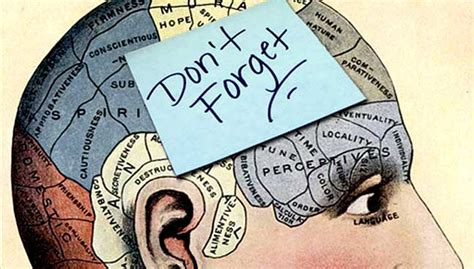 Moment Memory Brain how to keep your mind and memory sharp