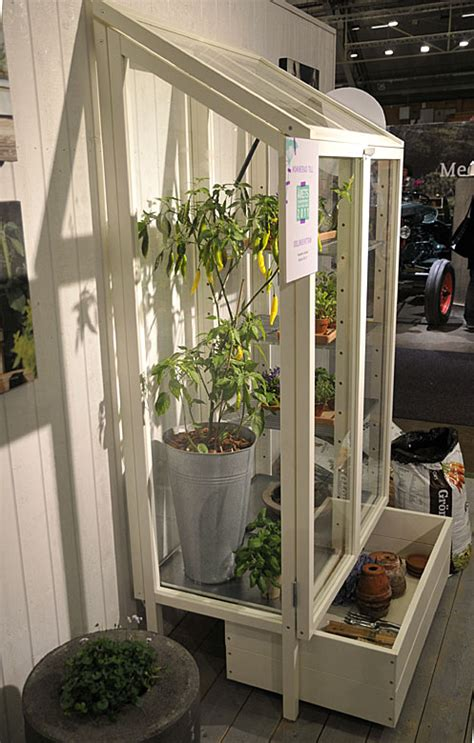 whiter shade  pale elmia garden