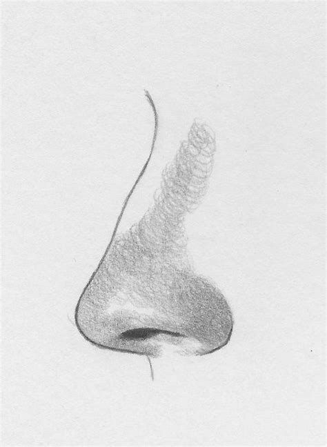Sketches Nose by How To Draw A Nose From The Side Rapidfireart Tutorials