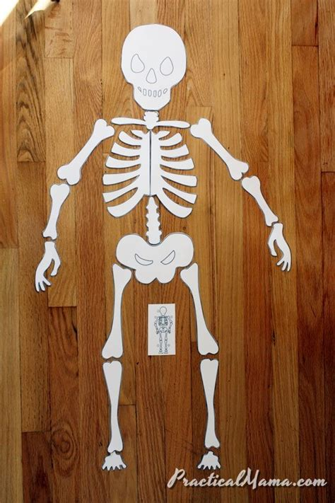printable skeleton puzzle halloween activity skeleton puzzle practical mama