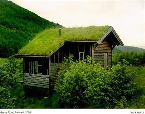 grass roof tiny house tiny house scotland