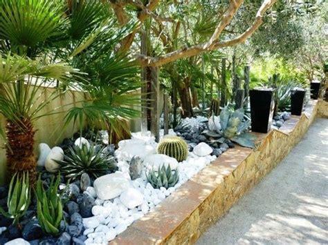 decoracion de jardines con piedras y cañas inspiration jardin mineral x cactus 2 jardin pinterest