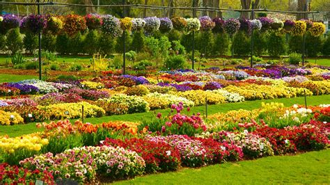 Dallas Flower Garden Dallas Vacations 2017 Package Save Up To 603 Expedia