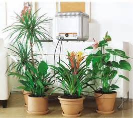 Self Watering Indoor Planters 8 automatic plant watering systems to make herb gardening