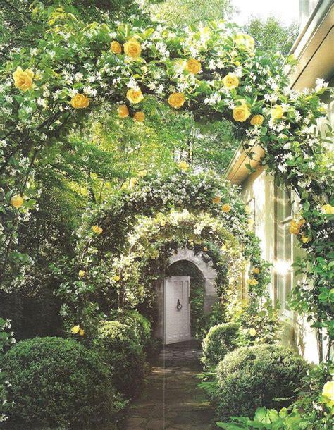 Arch Vs Sanaa S White Garden 17 Best Ideas About Vine On