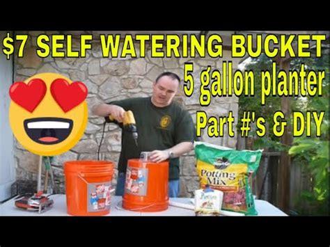 dollar  watering bucket diy