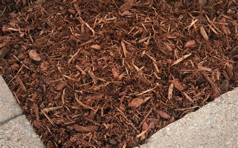 cedar bark mulch colored mulch bark mulch cedar mulch hemlock mulch natural home victory