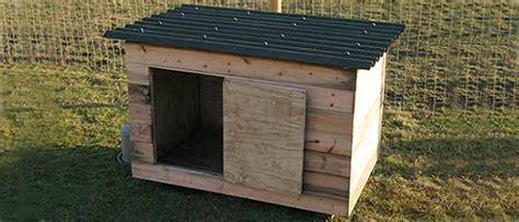 duck housing plans domestic duck house plans free
