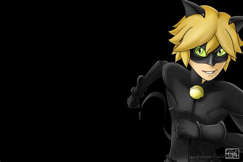 wallpaper chat noir chat noir wallpaper black bg by segldraws on deviantart