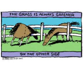 the grass is greener till you get to the other side books the grass is always greener equine ink