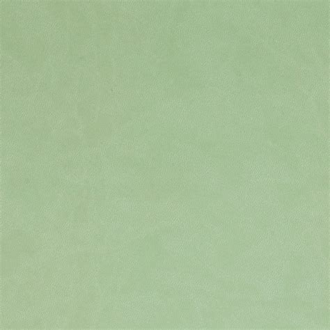 sage color sage green related keywords sage green long tail