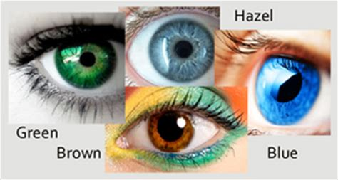 what is the most common eye color gb lifesciences