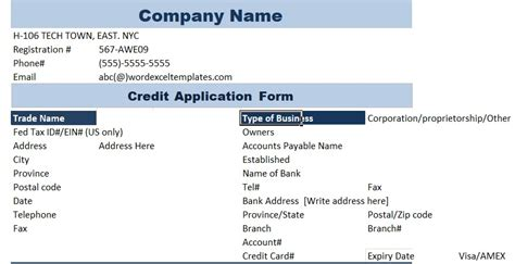 Business Credit Application Template Excel 5 Professional Business Credit Application Template Word Excel Pdf Excel Tmp