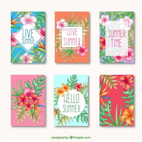 tropical cards tropical summer cards vector free