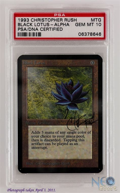 magic the gathering alpha black lotus neostore alpha black lotus psa dna gem mint 10