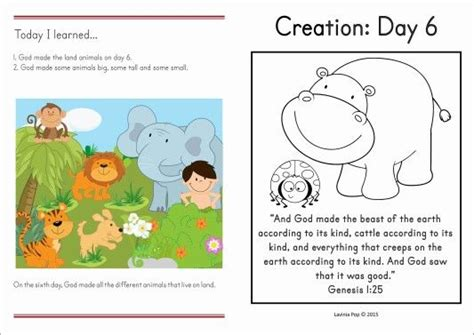 day sunday school lessons 252 best images about sunday school creation on