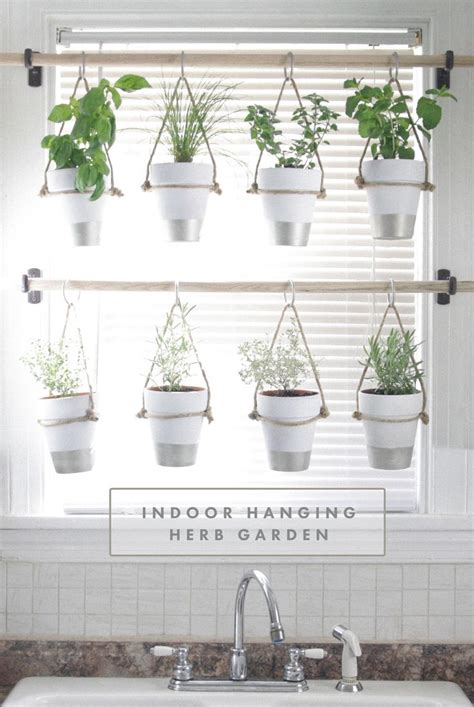 Hanging Window Herb Garden by The 25 Best Ideas About Hanging Herb Gardens On Pinterest