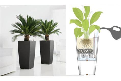 vaso fai da te vaso autoirrigante fai da te per l estate ecosost vivere