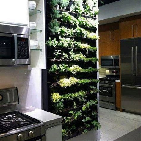 indoor kitchen herb garden judj garden