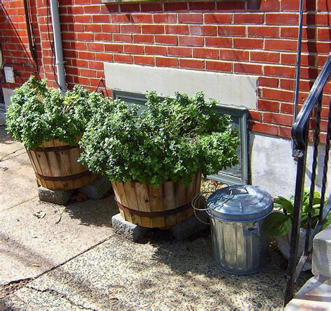 sidewalk barrel planters s photo album