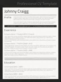 best professional resume templates